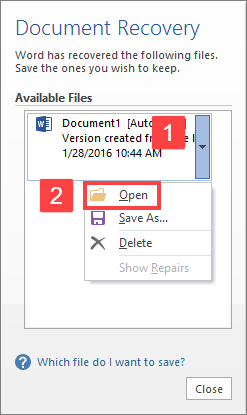 Document Recovery feature