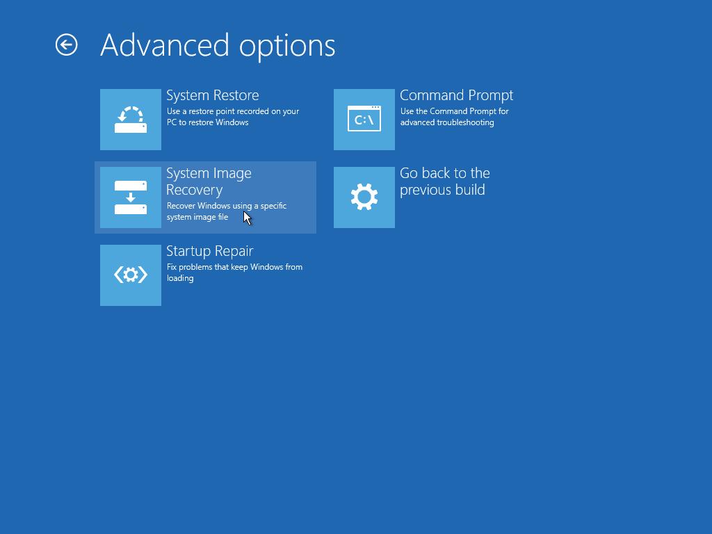 Windows Setup Advanced Options